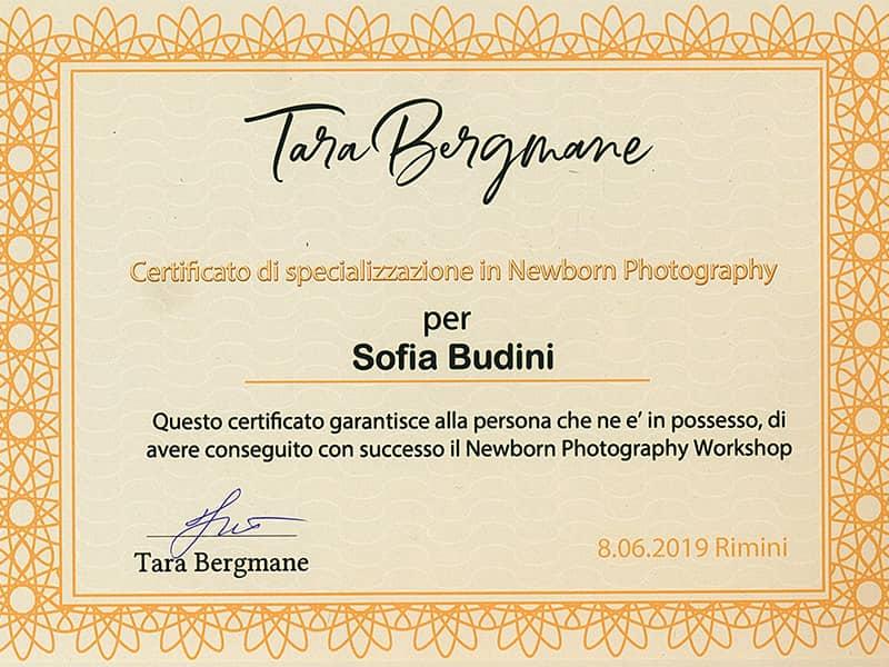 friendstudio fotografo servizio fotografico foto forlì cesena rimini faenza ravenna azienda cerimonia matrimonio certificato newborn sofia budini